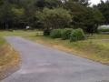Pull-thru campsites on Loop-B at Humbug Mountain campground