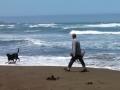 Jerry & pups at Manchester Beach