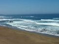 Coastal view at Bodega Bay