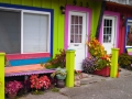 Local color at Port Orford
