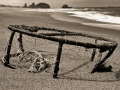 Beached Crab Trap
