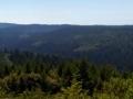 Redwood Creek Pano