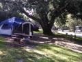 Tent site at the San Francisco North / Petaluma KOA