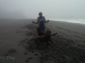 Kim playing with the pups on the foggy beach