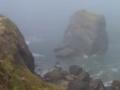 Foggy day on the coast at Trinidad