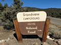 Grandview Campground - Ancient Bristlecone Pine Forest
