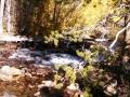 Stream below Lake Sabrina