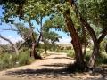 Sand-Island-Campground