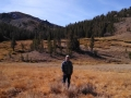 Jerry walking the pups in the Sonora Pass
