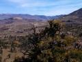 Desert vista from the Sonora Pass
