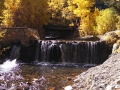 Virginia Lake Stream