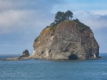 Sea stack rocks at La Push