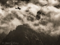 Plane flying down Columbia River Gorge - in black/white