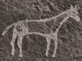 Bluff-Horse-Petroglyphs-2