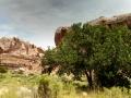 Calf-Canyon