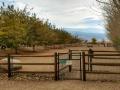 Boulder Creek RV Pet Run