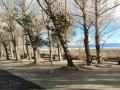 Boulder Creek RV Park Sites