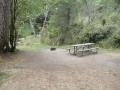 Campsite at Bullards Beach State Park