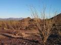Quartzsite-Dry-Camp-2