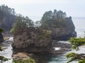 Rugged coast at Cape Flattery