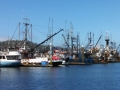 Fishing craft in port at Neah Bay