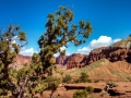Capitol-Reef-Panorama-Point-1