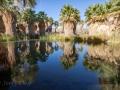 McCallum-Pond-Reflections