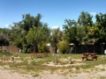 Cottonwood-RV-Park-Back-In-Sites