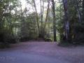 Dow Creek RV Resort Sites