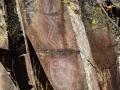 Horsethief Lake Rock Art - Pictograph