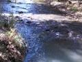 Creek behind Barbie & Gary's home at Sisters, Oregon