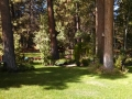 Backyard at Barbie & Gary's home, Sisters, Oregon