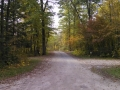 Itasca-SP-Campground