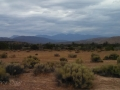 Cloudy Day at Mojave River Forks