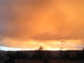 Rain Shower Sunset Glow at Mojave River Forks
