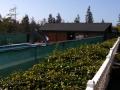 Ocean Breeze Resort Swiming Pool