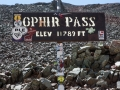 Ophir-Pass-Sign