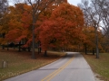 Iowa-Fall-Color-1