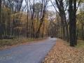 Iowa-Fall-Color-2