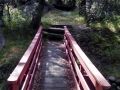 Foot-Bridge-at-Silent-Valley