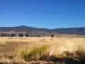 Susanville RV Park - View of meadow & hills behind the park