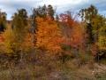 Lutsen-Mtn-Fall-Color-1