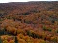Lutsen-Mtn-Fall-Color-3