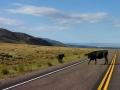 Highway-72-Open-Range