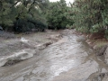 Heavy rains left creek through Silent Valley Club choked with sand and mud.
