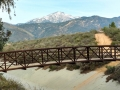 Footbridge at Yucaipa Regional Park