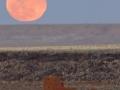 Moonrise Over Wukoki Ruin - 2007